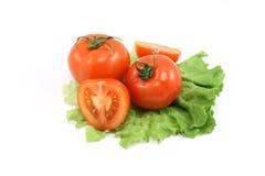 Tomate e alface Imagens de Stock Royalty Free