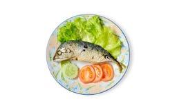 Tomate e pepino da salada da cavala no prato Imagens de Stock