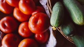 Tomate e pepinos foto de stock royalty free