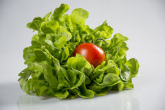 Tomate e salada Imagem de Stock