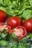Tomate e salada verde Imagem de Stock
