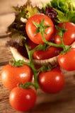 Tomate e vegetais Fotografia de Stock