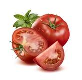 Tomate em gotas da água, meio inteiro, de um quarto e manjericão isolada Fotografia de Stock Royalty Free