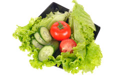 Tomate, ensalada, pepino Foto de archivo