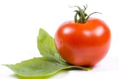 Tomate et basilic Photographie stock