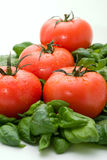 Tomate et basilic Photos stock