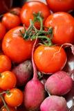Tomate et betteraves Image libre de droits
