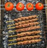 Tomate et chiche-kebab Images libres de droits