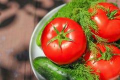 Tomate et concombres frais Image stock