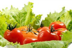 Tomate et laitue Photographie stock