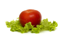 Tomate et salade Photos libres de droits