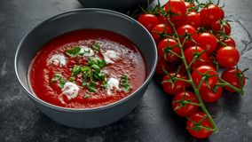 Tomate et soupe fraîche à basilic avec l'ail, grains criqués de papper, servis avec de la crème et le pain de levain Photos libres de droits