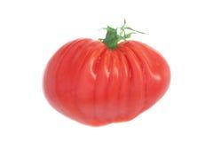 Tomate. Forme de coeur. image libre de droits