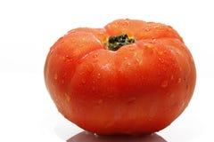 Tomate fraîche images libres de droits