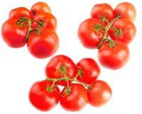 Tomate fraîche sur le blanc Photographie stock