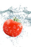 Tomate fraîche tombant dans l'eau Photos libres de droits