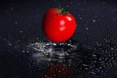 Tomate fraîche tombant dans le magma de l'eau photographie stock libre de droits