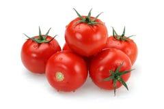 Tomate fraîche Photo libre de droits