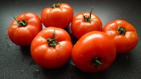 Tomate frais juteux images stock