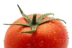 Tomate fresco Foto de Stock
