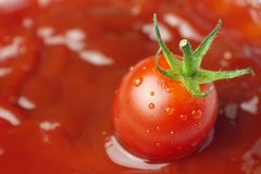 Tomate fresco no molho de tomate foto de stock
