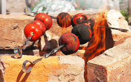 Tomate gegrillt auf Aufsteckspindel Stockfotografie