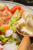 Tomate, Gurke, Rettiche, Kopfsalat und Majonäse in der Glasschüssel lizenzfreie stockbilder