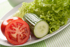 Tomate, Gurke und grüner Salat Stockbild