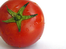 Tomate humide Images stock