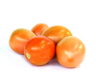 Tomate im Studio auf Weiß Stockfoto