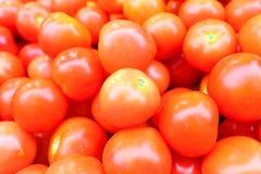 Tomate im Verkauf Stockfotos