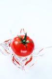Tomate im Wasser Lizenzfreies Stockbild