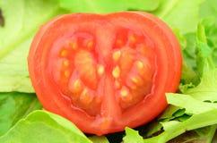 Tomate-Inneres stockfoto