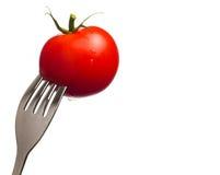 Tomate isolado Imagens de Stock