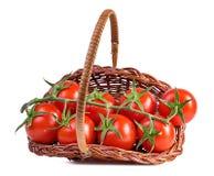 Tomate isolado no branco fotografia de stock royalty free