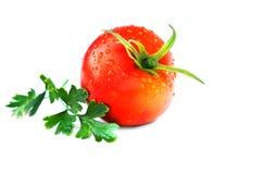 Tomate isolado no branco Foto de Stock Royalty Free