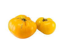 Tomate jaune Photographie stock