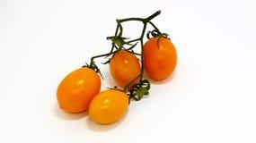 Tomate jaune sur le fond d'isolement blanc photo stock