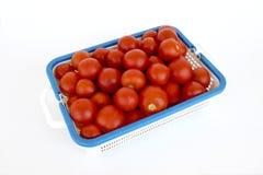 Tomate-Korb Lizenzfreies Stockfoto