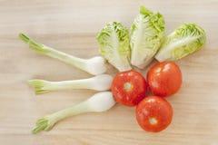 Tomate, lechuga y cebollas Fotografía de archivo