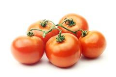 Tomate lokalisiert auf weißem Hintergrund Stockfotos