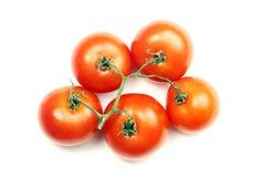 Tomate lokalisiert auf weißem Hintergrund Stockfotografie