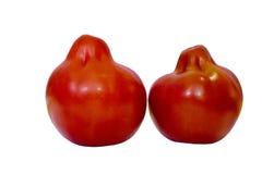 Tomate lokalisiert auf weißem Hintergrund mit Beschneidungspfad Nahaufnahme ohne Schatten Makro Auf lagerfoto von zwei Tomaten ge Stockfotos