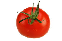 Tomate maduro aislado Foto de archivo
