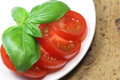 Tomate mit Basilikum Stockfotografie