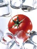 Tomate mit Eis Stockfoto