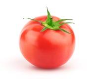 Tomate mit grünem Blatt lizenzfreie stockfotografie