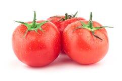 Tomate mit grünem Blatt und Tropfen lizenzfreie stockbilder