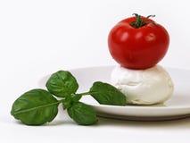 Tomate mit Käse und süßem Basilikum Lizenzfreies Stockfoto