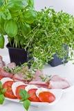 Tomate, mmozzarella et jambon photographie stock